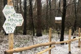 У Виноградарському лісі відкрили стежку здоров'я